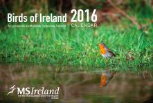 MS Calendar 2016