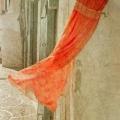 Joint 1st Colour Print - Grade 1 - Ann Francis