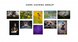 1st Place Colour Print Panel - Cork Camera Group